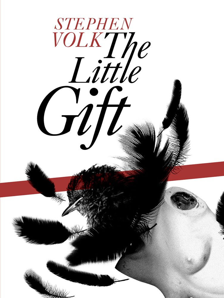 the-little-gift-hardcover-by-stephen-volk-[3]-4237-p